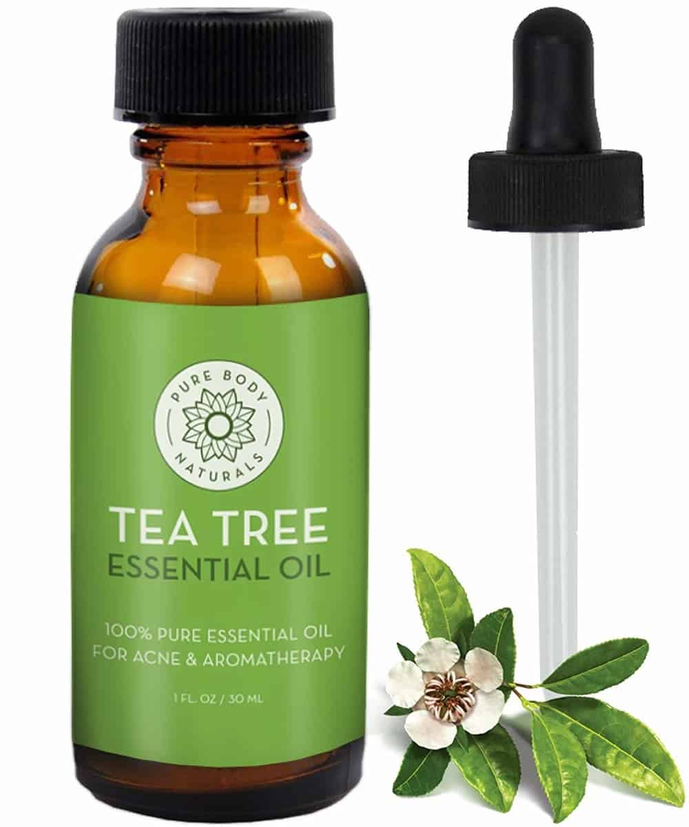 Ranking The Best Tea Tree Oil