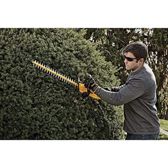 Best Hedge Trimmer In 2020